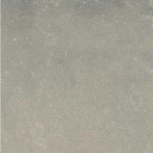 Гранитогрес ESPRIT NEUTRAL GRIS 120x120